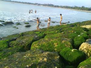 Garis Pantai, Mulai Menyebrang